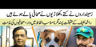Dogs for the landlord and Journalist for Pakistani cricketers
